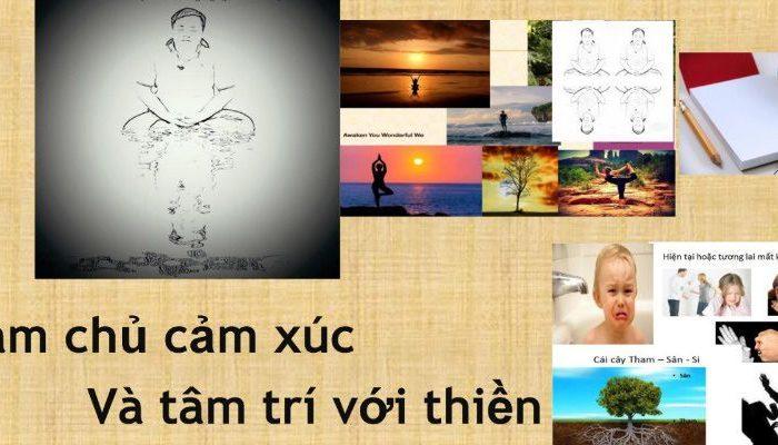 Khóa học Tham, Sân, Si và Thiền trong quản trị cảm xúc